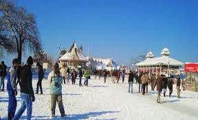Manali Chandigarh Honeymoon Tour