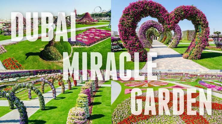 Dubai With Miracle Garden Tour