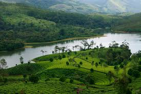 Munnar Thekaddy Short Tour