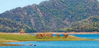 CORBETT SHORT BREAK TOUR