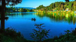 Darjeeling Premium Package for 4 Days
