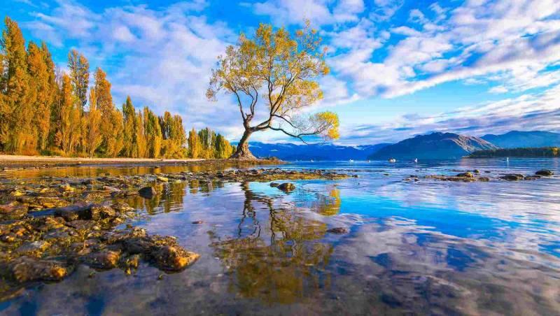 Spectacular New Zealand Self Drive Tour