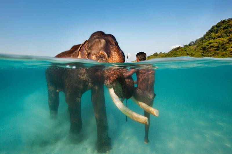 Explore Havelock-  5 Days and 4 Nights ( Free Scuba Voucher )