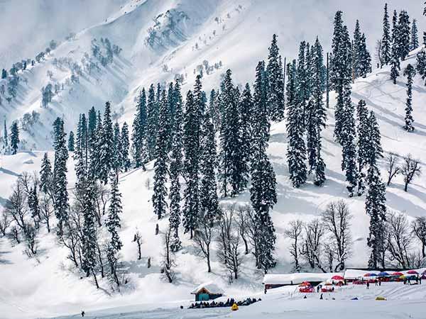 Natural Beauty of Kashmir Tour ( 7N-8D )