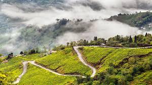 Gangtok Lachen Lachung Darjeeling Tour