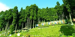 3 Night 4 Days Bagdogra Airport - New Jalpaiguri Railway Station to Gangtok Tour
