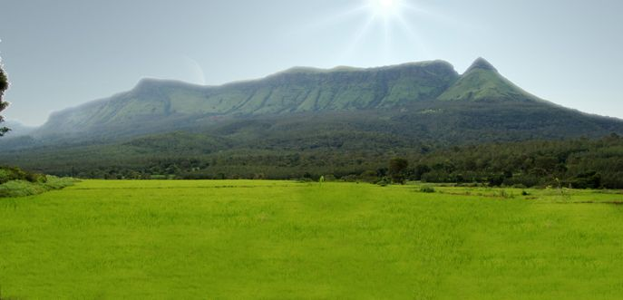 Weekend Tour to Chikmagalur Package