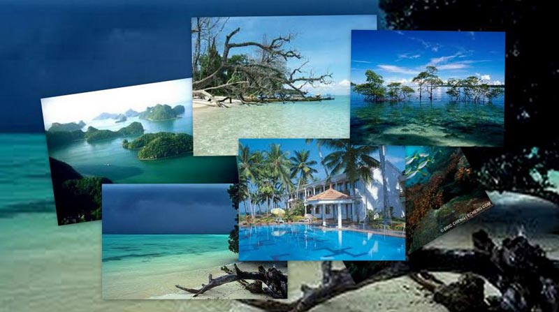 Andaman Package 04Night/05Days(Holidays For Honeymooners)