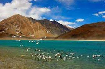 Ladakh Tour Package (06n/07d)