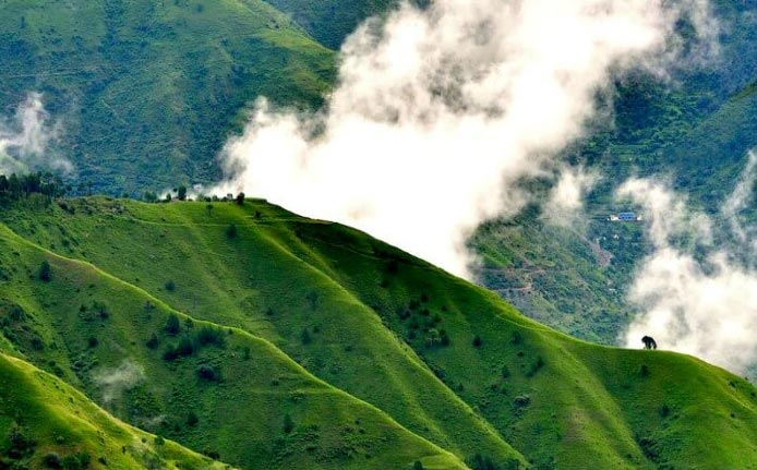 Chail Tour Package