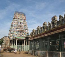 One Day Thirumal Darshan Tour