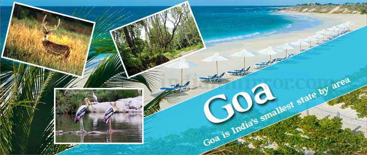 Goa Luxury Package