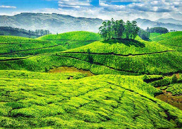 Blasting Kerala Tour Package