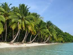 Radhanagar Beach Tour Package