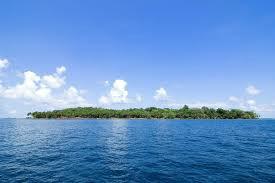 Vacation in Chidiya Tapu