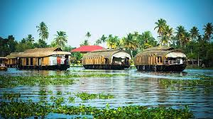 Backwater Honeymoon Package 2 Nights 3 Days