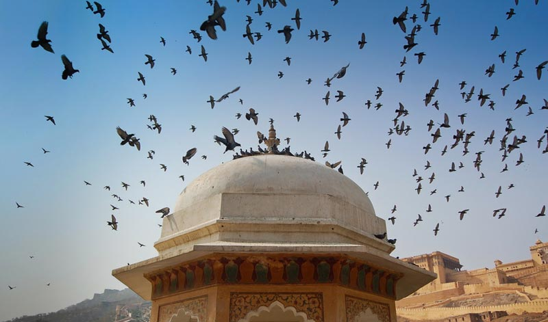 Golden Triangle Tour - Essence Of Northern India