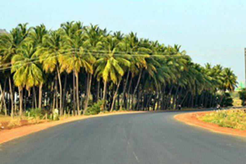 Temples with Beach Tour of Tamilnadu & Kerala Package