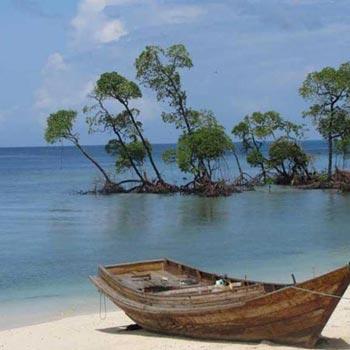 South Andaman Tour