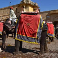 Day Tours Jaipur