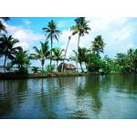 Cochin - Munnar - Thekkady - Alleppey - Kovalam Tour
