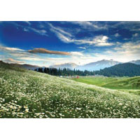 Kashmir - The Paradise On Earth