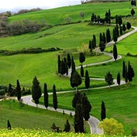 Magical Hills of Ooty Tour