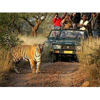 Golden Triangle with Ranthambore Tour Package