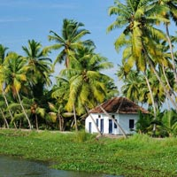 Kerala Exotic Tour