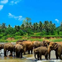 Explore Sri Lanka Tour