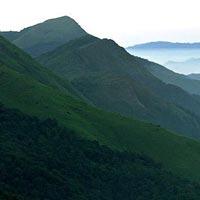 Ooty - Kodaikanal - Munnar - Cochin Tour