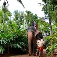 My Dream Kerala Tour