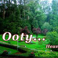 Best of Bangalore - Mysore - Ooty Tour