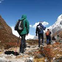 Sandakphu Trekking Tour