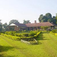 Tea Tour of Assam