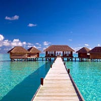 Andaman Island One Day Tour