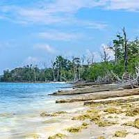 Flight Inclusive - Jewels Of The Bay Andaman 5N/6D Tour