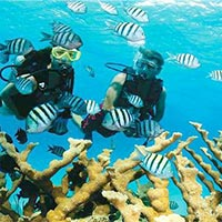 Port Blair + Havelock 5 Nights Tour
