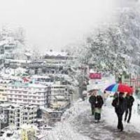 Camps in Himachal Tour