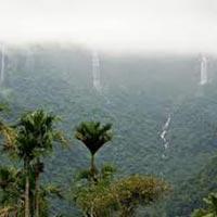 Amazing Assam with Meghalaya Tour
