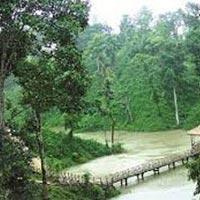 Aromas Of Assam Tour / Assam Aroma Tour