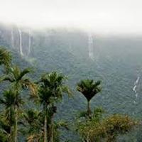 Assam & Meghalaya Tour