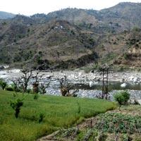 Amritsar - Dharamsala - Manali - Shimla Tour