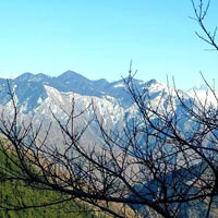 Pathankot - Dalhousie - Baijnath - Mcleodganj Char Devi Tour