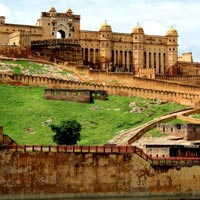 Pink City With Wild Experience Jaipur Tour