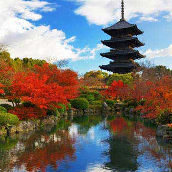 Handpicked Japan 12N/13D Package