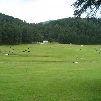 Complete Himachal Tour Package 9N/10D