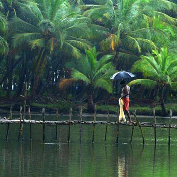 Appealing Coorg & Mysore 5N/6D Tour