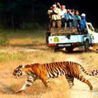Best honeymoon In India - New Delhi - Nainital - Mussoorie Honeymoon Holiday Package