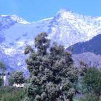 Dharamsala - Dalhousie - Manali Tour